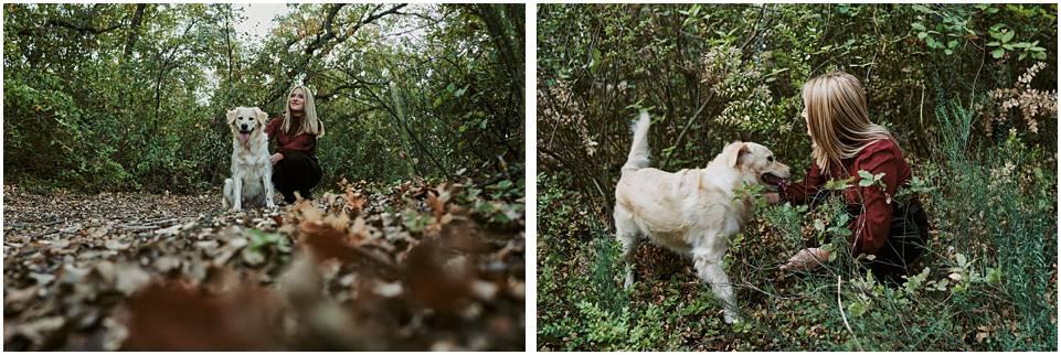 fotos de perro
